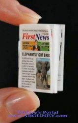 En küçük gazete