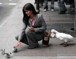 Hayvanlarý sevmek güzel tabiki çantaya dikkat etmek lazým :)