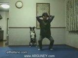 Sporcu Köpek