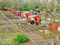 Emekliler Ýçin 2. Hobi Bahçesi Projesi Hayata Geçiyor